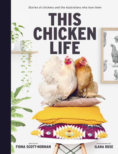 This-Chicken-Life.jpg