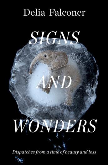 Signs-and-Wonders.jpg